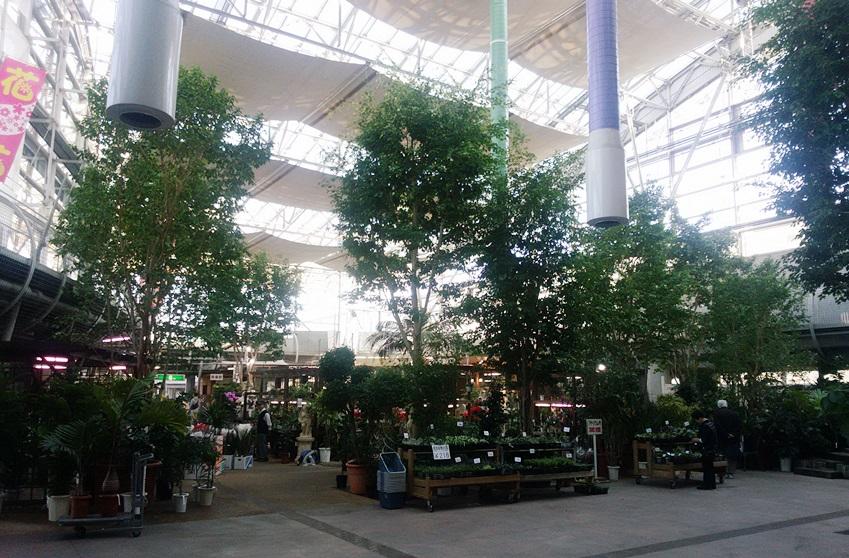 川口緑化センター樹里安